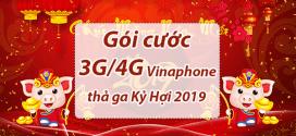 Nên chọn gói cước 3G 4G Vinaphone nào để sử dụng thả ga trong tết Kỷ Hợi 2019?