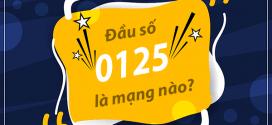 0125 là mạng gì? Đầu số 0125 đổi thành đầu số 10 số nào?
